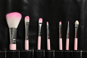 Makeup brush set in the black case