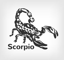 Scorpion vector black icon logo illustration