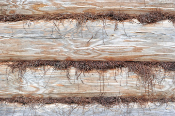 background of hewn logs and insulation