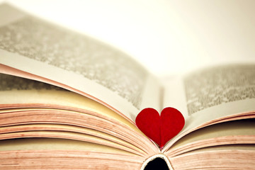Red heart and the book