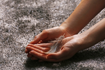 Hands holding a feather on grey carpet background, close-up