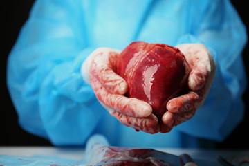 Doctor holding heart in her hands
