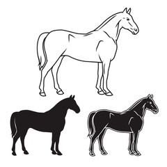Hand drawn horse set. Vector illustration