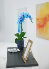 Beautiful blossoming branch of a blue orchid is on the table against wall with bright painting