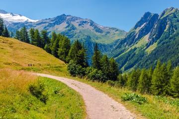 Wall Mural - Alpine Trail in Switzerland
