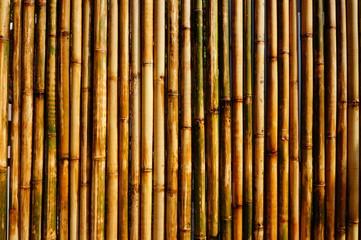 Стена из стеблей бамбука