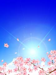桜 春 空 背景