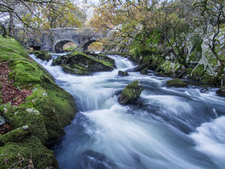 Ogwen river above Bethesda flowing around mossy rocks with a stone bridge in the background.