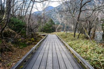 Wood ways around at Lake Yunoko in Nikko, Japan