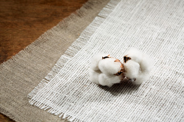 cotton, fiber on a wooden background.