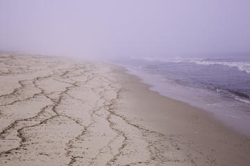 Misty beach on Cape Cod at Wellfleet Massachusetts.