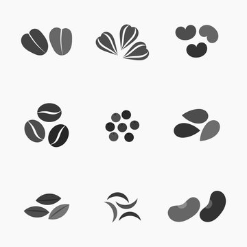 Various seeds collection. Vector illustration