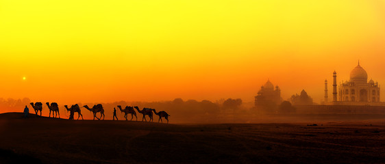 Canvas Prints Yellow Tourism panoramic landscape of Agra, India