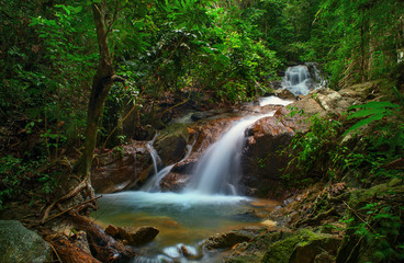 Wild jungle forest and scenery waterfall cascade with tropical plants. Thailand nature background