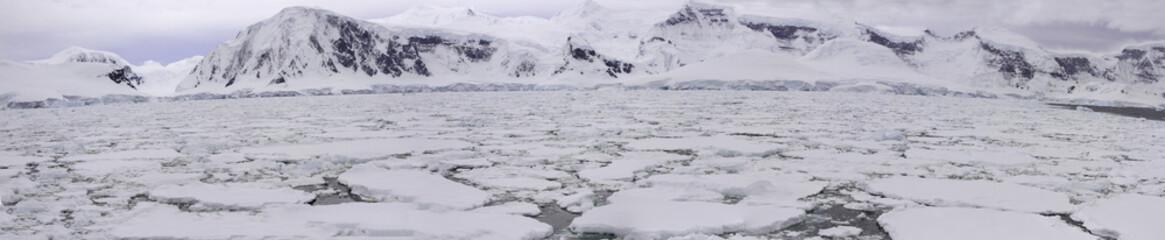 Panorama of pack ice field, Antarctica