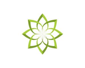 Lotus flower green leaf
