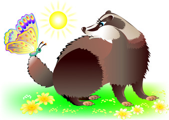 Badger looking at butterfly, vector cartoon image.