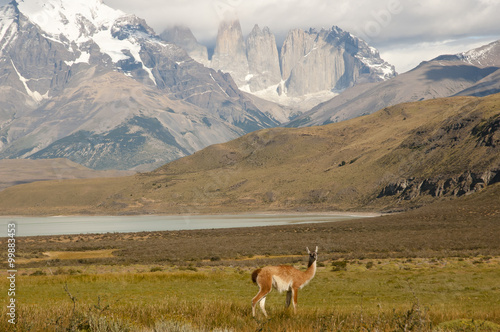 Wall mural Torres Del Paine National Park - Chile