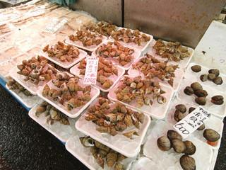冬の港の市場のツブ貝と赤貝