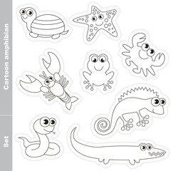 Amphibian  set in vector.