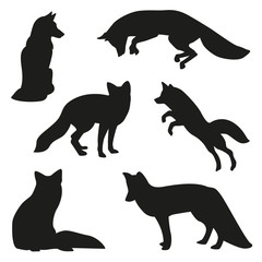 fox silhouette set