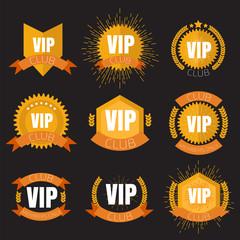 VIP club logo in flat style