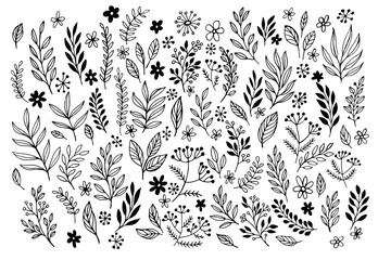 Set of sketches and line doodles  hand drawn design floral elements. Vector illustration