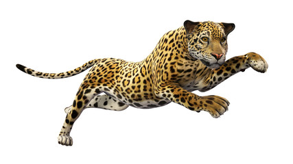 Jaguar leaping, wild animal isolated on white background