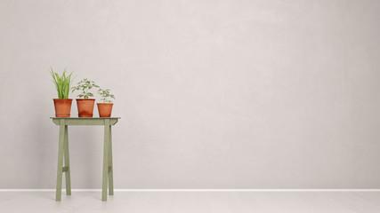 Pflanzen vor Wand im Flur