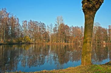 Mühlenteich im Münsterland