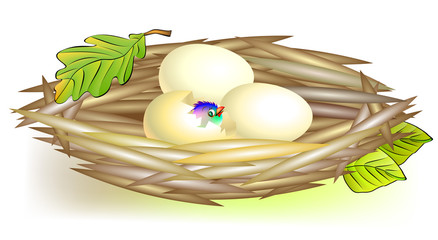 Illustration of nest, vector cartoon image.