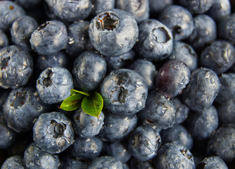 Blueberries with drops of water close-up