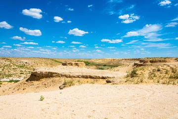Fototapeta Desert landscape on a summer day. obraz