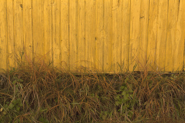 Old yellow wooden house and faded grass.