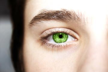 Beautiful insightful look green eyes