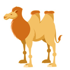 Cartoon yellow camel