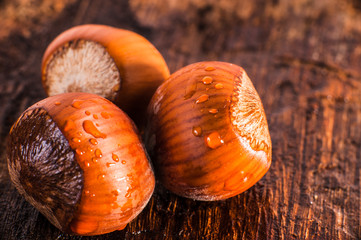 Fresh hazelnuts with
