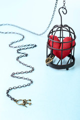 heart in bird cage with keys