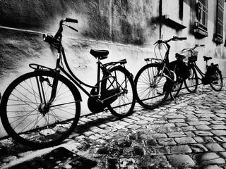 Biciclette a Ravenna