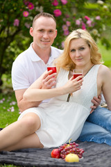 Cute couple drinking red wine on a picnic smiling at each other on a sunny day