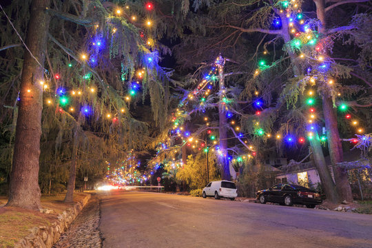 Famous Christmas Tree Lane