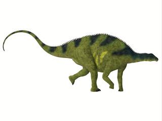 Brachytrachelopan Side Profile - Brachytrachelopan was a herbivorous sauropod dinosaur that lived in Argentina during the Jurassic Period.