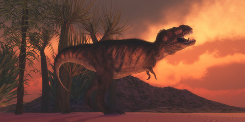 T-Rex Tyrant - A Tyrannosaurus Rex dinosaur roars to claim his territory as the sun sets on a Cretaceous day in North America.