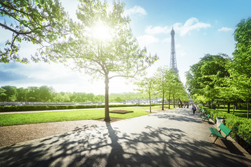sunny morning and Eiffel Tower, Paris, France Fototapete