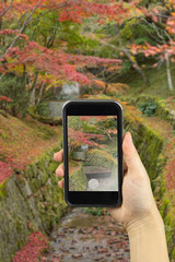 take photo with colorful Autumn Leaf Season in Japan