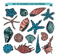 Vector set of seashells and starfishes.