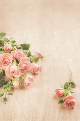 Small pink roses on wood, st. Valentine background, text space