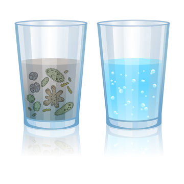Glass with clean and dirty water, infection illustration. Vector