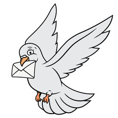 White pigeon is carrying letter