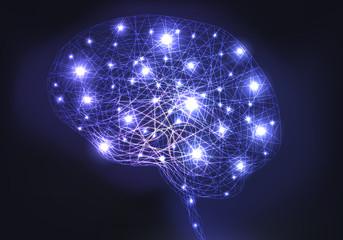 CERVEAU Imagerie neurones